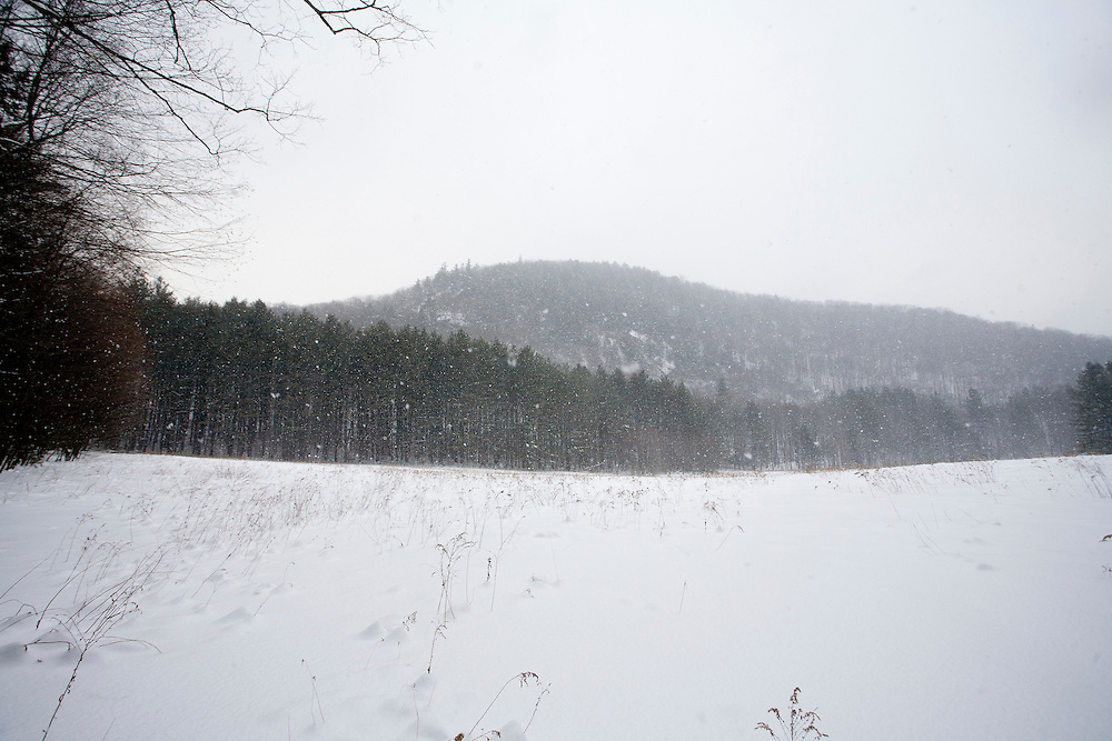 Mohawk Trail State Forest, Masachusetts
