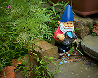 Troll in front of the wildflower garden. Image taken with a Leica CL camera and 23 mm f/2 lens.