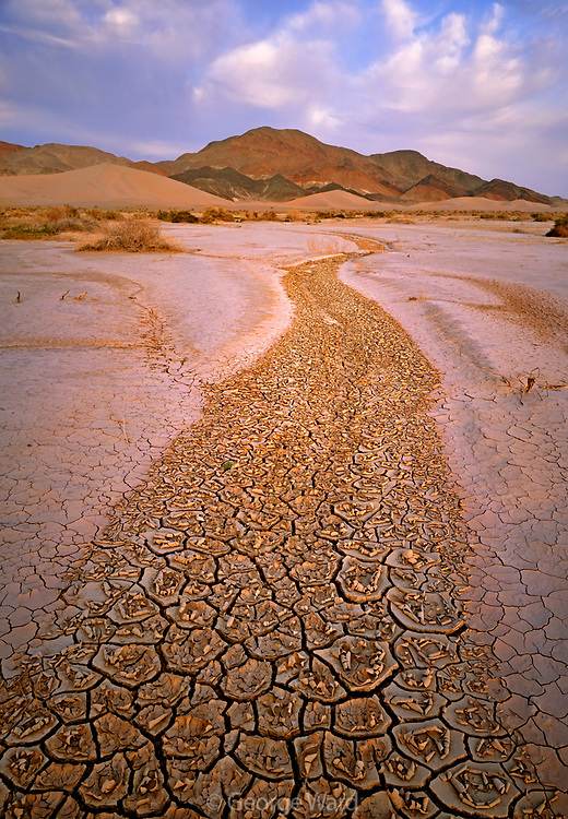 Dried Arroyo, Ibex Dunes, and Saddle Peak Hills, Death Valley National Park, California