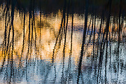 Autumn pond reflection, evening light, Cheshire County, New Hampshire, USA