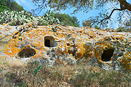 Pictures of Copper age Domus de Janas Sas Concas prhistoric chambered rock burial chambers cared into trachyte ,  Abealzu-Filigosa culture 3000 BC, Oniferi,  province of Nuoro, Sardinia. .<br /> <br /> If you prefer you can also buy from our ALAMY PHOTO LIBRARY  Collection visit : https://www.alamy.com/portfolio/paul-williams-funkystock/domus-janus-sas-concas-sardinia.html<br /> Visit our PREHISTORIC PLACES PHOTO COLLECTIONS for more   photos  to download or buy as prints https://funkystock.photoshelter.com/gallery-collection/Prehistoric-Neolithic-Sites-Art-Artefacts-Pictures-Photos/C0000tfxw63zrUT4