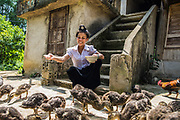 Quang Thi Kien, 27 years old, feeding her ducks and chicken, in Muong Phang, Dien Bien Phu, Vietnam, May 2017.