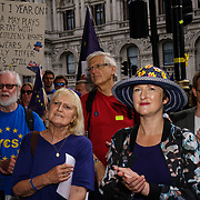 Downing Street, London, UK. 23rd June, 2017. The No10 Vigil against Brexit being held on the first anniversary of the EU Referendum outside Downing street.