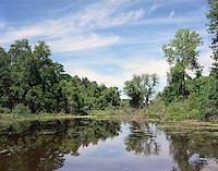 Backwater along Connecticut River, Putney, VT