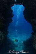 diver enters lava tube at Niihau Arches, between Lehua Rock and Niihau Island, off Kauai, Hawaii USA ( Central Pacific Ocean ) MR 305
