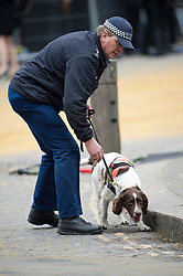 © London News Pictures.17/04/2013. London, UK.  A police sniffer dog performing security checks outside St Paul's Cathedral in London before The Funeral of former British Prime Minister, Margaret Thatcher on April 17, 2013. Photo credit : Ben Cawthra/LNP
