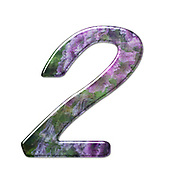 The number Two Part of a set of letters, Numbers and symbols of 3D Alphabet made with a floral image on white background