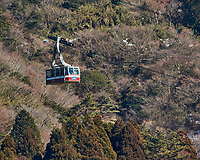 Gondola to the top of Mount Komagatake from the deck of a tourist pirate ship on Lake Ashi. Image taken with a Nikon 1 V3 camera and 70-300 mm VR telephoto zoom lens.