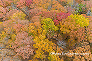 63876-02603 Aerial view of fall color trees Stephen A. Forbes State Park Marion Co. IL