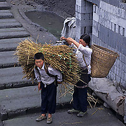 China, People, Mother loading up wheat on young boys back. Shanghai.