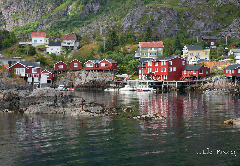 Colourful rorbu, fishermen's cabins, in the fishing village of A on Vest Fjord, Moskenesoy, the Lofoten Islands, Norway