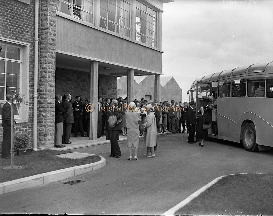 Finding your roots in Donegal. Come to Donegal,The Irish Photo Archive hopes that you find out a lot about your ancestry. Come together in big groups like you see in the picture from The Irish Photo Archive.