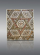 Pictures of a geometric Roman mosaics with a hexagon at its centre in the middle of which is a cruciform of flowers, from the ancient Roman city of Thysdrus, house in the M'Barek R'Haiem area. Begining of 3rd century AD. El Djem Archaeological Museum, El Djem, Tunisia. .<br /> <br /> If you prefer to buy from our ALAMY PHOTO LIBRARY Collection visit : https://www.alamy.com/portfolio/paul-williams-funkystock/roman-mosaic.html . Type - El Djem - into the LOWER SEARCH WITHIN GALLERY box. Refine search by adding background colour, place, museum etc<br /> <br /> Visit our ROMAN MOSAIC PHOTO COLLECTIONS for more photos to download as wall art prints https://funkystock.photoshelter.com/gallery-collection/Roman-Mosaics-Art-Pictures-Images/C0000LcfNel7FpLI