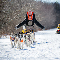 A snowmobiler watches as a musher celebrates crossing the finish line with his team of huskies during the Wonalancet Sled Dog Fun Run in Wonalancet, New Hampshire.
