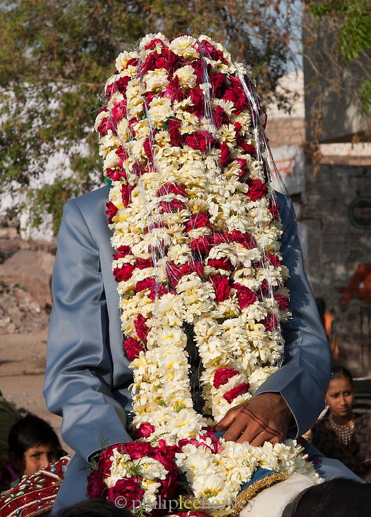 A groom on his wedding day wearing his Sehra, a headdress worn during the marriage. It has garlands hanging that covers the face of the groom. Jodhpur, Rajasthan, India