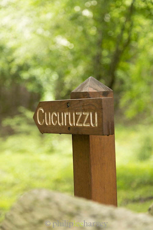 Close up of information sign on archaeological site, Cuccuruzzu, Corsica, France