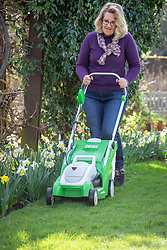 First mowing of the lawn in early spring using a rechargeable battery mower