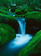 Cascading Roaring Fork River, Great Smoky Mountains National Park, Tennessee.