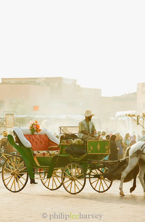 A man with horse and cart offers rides to tourists at the Djemaa el Fna in the medina of Marrakech, Morocco
