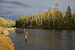 Madison River Fly Fishermen, Yellowstone National Park