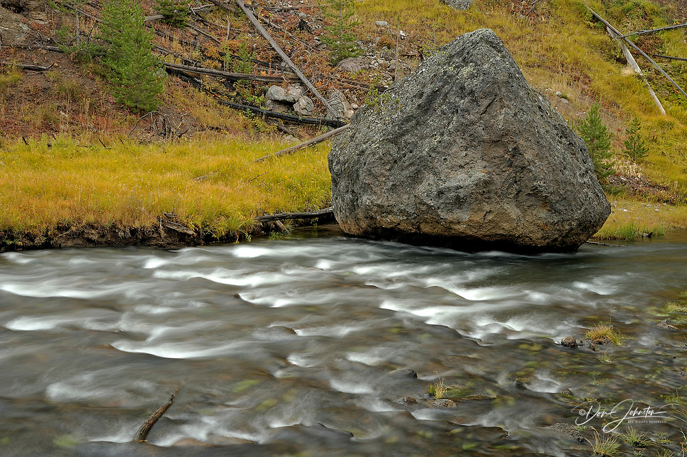 Rapids on Gibbon River with shoreline grasses in autumn, Yellowstone NP, Wyoming, USA