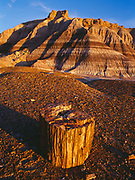 Petrified wood round and banded badlands of the Chinle Formation, Blue Mesa, Petrified Forest National Park, Arizona.