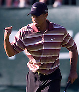 Tiger Woods wins the 2005 NEC Invitational at Akron's Firestone Country Club.