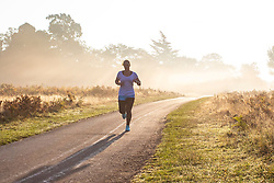 © Licensed to London News Pictures. 10/10/2018. London, UK. A woman running at sunrise in Bushy Park, south London. Forecasters are expecting unusually warm temperatures for October. Photo credit: Rob Pinney/LNP
