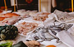 THEMENBILD - ein Fischgeschäft in einer kleinen Gasse, aufgenommen am 04. Oktober 2019 in Venedig, Italien // a fish shop in a small alley, in Venice, Italy on 2019/10/04. EXPA Pictures © 2019, PhotoCredit: EXPA/Stefanie Oberhauser