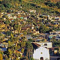 Americas, Central America, Guatemala, Lago Atitlan. A banana tree plant against the panoramic backdrop of a town on Lago Atitlan.
