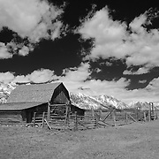 Mormon Row Barn And Stable - Grand Tetons, WY - Infrared Black & White