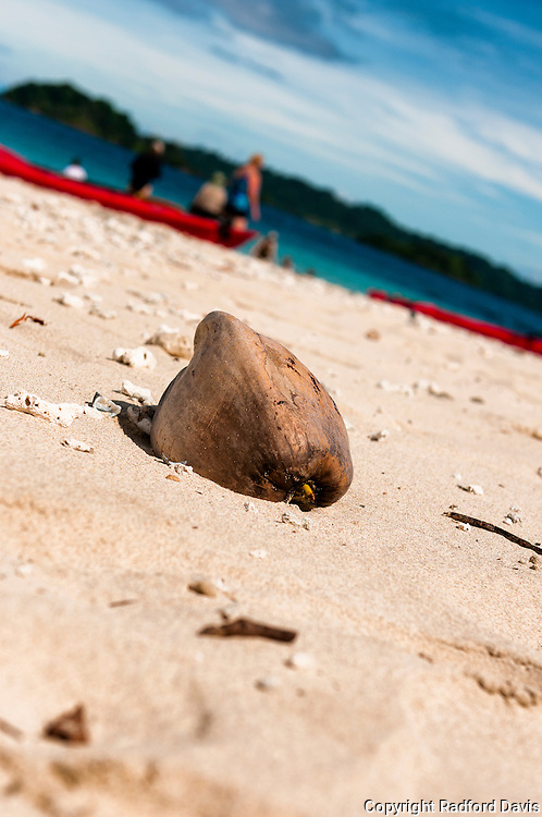 Beach and coconut, Costa Rica