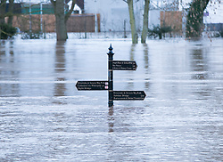© Licensed to London News Pictures. 13/2/2014. Worcester, UK. The River Severn flowing through Worcester reaches an all time high. Pictured, an information sign almost submerged by the swollen river. Photo credit : Dave Warren/LNP