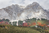 Mons Styriae altissimus<br /> Passing the mountain in Upper Styria when the leaves change colour.