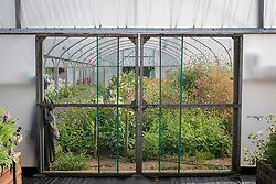 The polytunnel at Green and Gorgeous