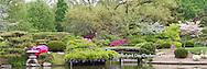 65021-03702 Japanese Garden in spring, Missouri Botanical Gardens, St Louis, MO