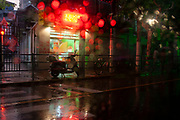 Street scene in the rain on Fuxing Rd, Fuxing Lu, near to Rejin Lu, Shanghai, China. This simple scene is indicative of Shanghais streets, containing a scooter, Peace Trees and a neon sign.