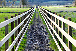 © Licensed to London News Pictures. 11/02/2020. Wendover, UK.  Fenced in footpaths on the proposed HS2 route near Wendover on the day the Government is expected to give the go-ahead to the controversial high speed railway between London and Birmingham. Taken from a public footpath. Photo credit: Cliff Hide/LNP