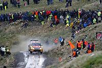 MOTORSPORT - WORLD RALLY CHAMPIONSHIP 2010 - WALES RALLY GB / RALLYE DE GRANDE-BRETAGNE - CARDIFF (GBR) - 11 TO 14/11/2010 - PHOTO : ALEXANDRE GUILLAUMOT / DPPI - <br /> Petter SOLBERG (NOR) / Chris PATTERSON (GBR) - PETTER SOLBERG WORLD RALLY TEAM - CITROEN C4 WRC - Action