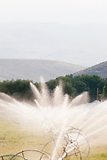 Sprinklers on a farm in Montana. Missoula Photographer, Missoula Photographers, Montana Pictures, Montana Photos, Photos of Montana