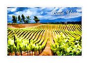Bella Vista sample WineArt card