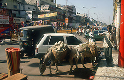 Chandni Chowk; a main shopping street in Delhi; India; with donkeys in the foreground,