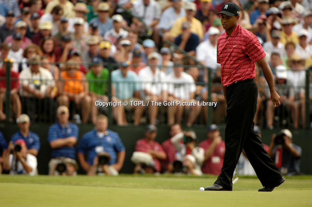 Tiger WOODS (USA)  misses putt during fourth round US Open 2005,Pinehurst No.2,Pinehurst,North Carolina,USA.