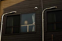 A man stands by window in Kamagasaki, Japan. Suicide, like jumping from building, is common in this community.