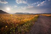 Montana backroad near Wolf Creek.