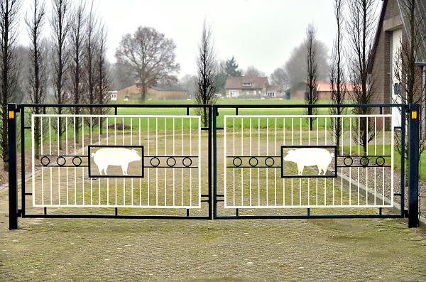 Nederland, Boekel, 10-2-2018Megastallen en varkens in het buitengebied. Een boerderij met figuren van twee varkens in het hek gelast .Foto: Flip Franssen
