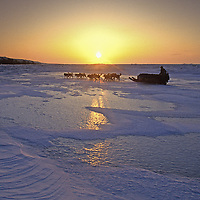 Polar explorer Will Steger mushes a dog team across the frozen Arctic Ocean north of Inuvik in the Northwest Territories of Canada.  A long sunset hovers on the horizon as spring gradually approaches.