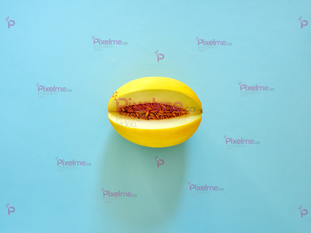 Yellow Melon Fruit isolated in cyan background viewed from above - flatlay look - Image Minimalism concept