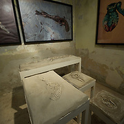 VENICE, ITALY - JUNE 02:  Works by Imran Hossain Piplu at the Pavillion of Bangladesh taking part for the first time at the Venice Biennale on June 2, 2011 in Venice, Italy. This year's Biennale is the 54th edition and will run from June 4th until 27 November.