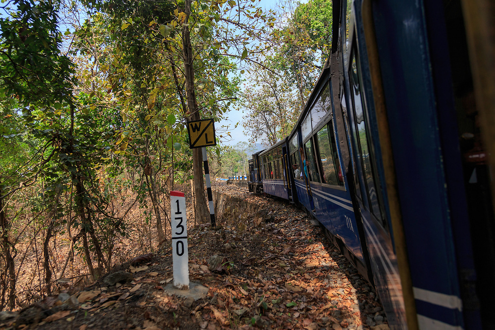 DHR train on route in India.